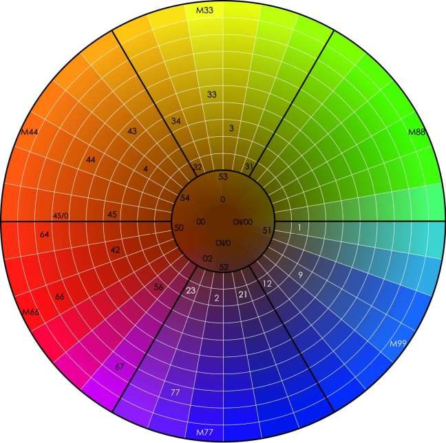 KIN Color Wheel